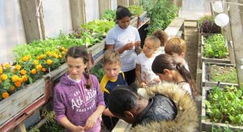 Y Active members experiencing the community run Skip Garden