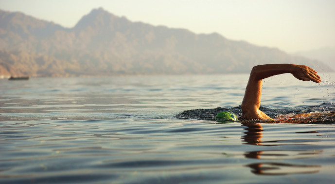 Take a dive into open water